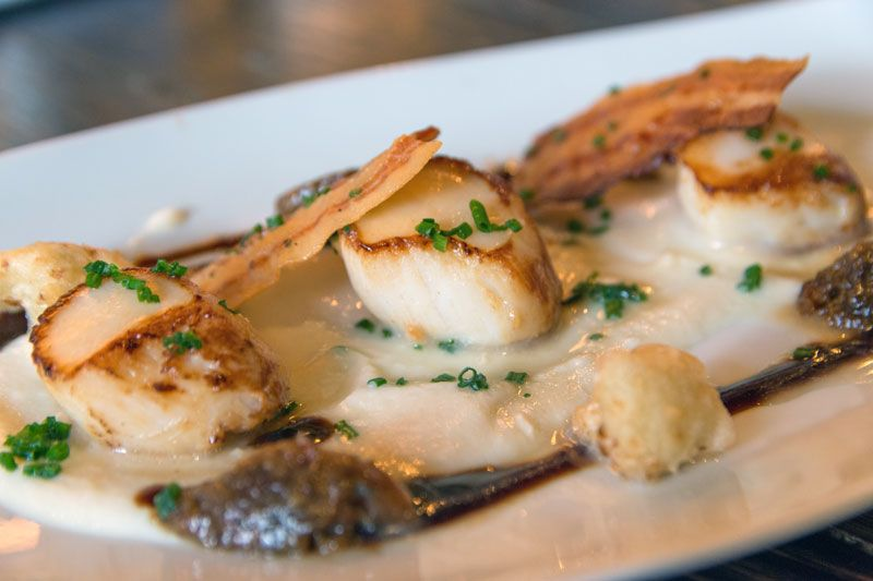 Fresh Atlantic scallops being plated up